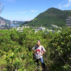 香港仔郊野公園 用戶圖片