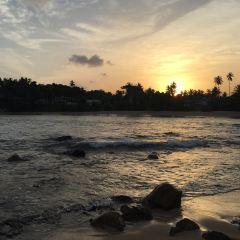 Goyambokka Beach用戶圖片