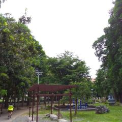 Dafeng Park User Photo