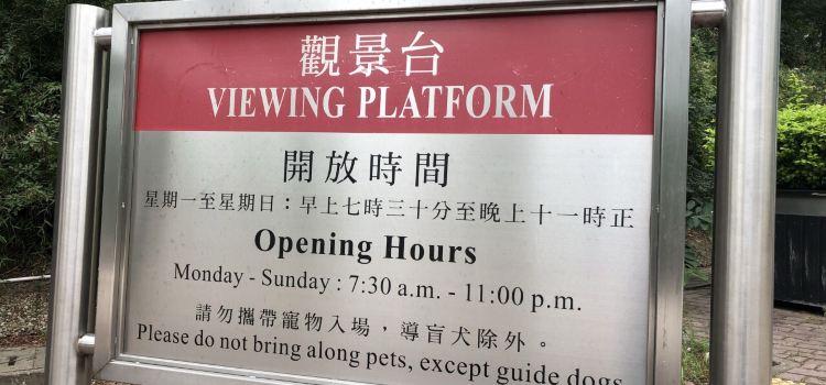 Lantau Link Visitors Centre & Viewing Platform2