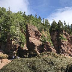 Hopewell Rocks User Photo