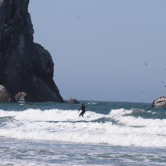 Morro Strand State Beach User Photo
