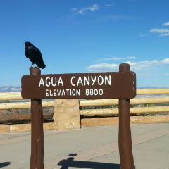 Agua Canyon User Photo