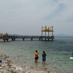 양마섬 여행 사진