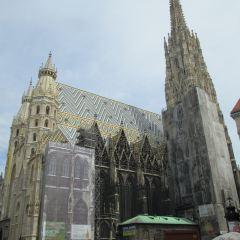 Church of the Teutonic Order用戶圖片