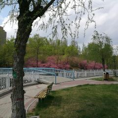景園公園用戶圖片