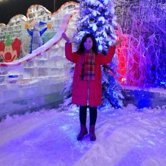 Handan Ice Sculpture and Lotus Flower Expo User Photo