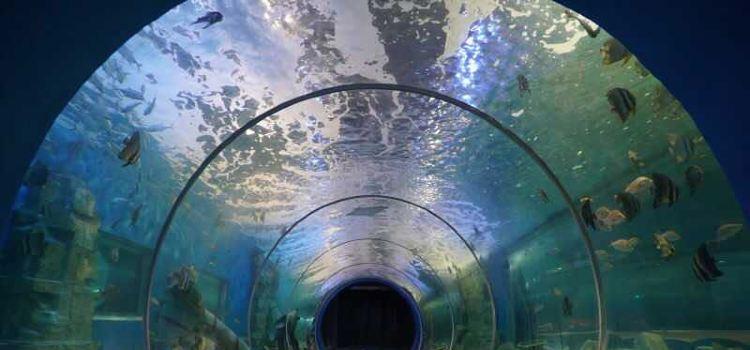 하이리팡 해양공원1