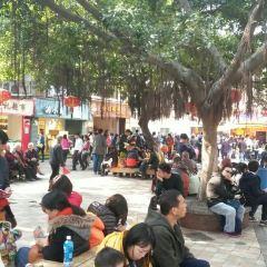 張三瘋奶茶店(街心公園店)用戶圖片
