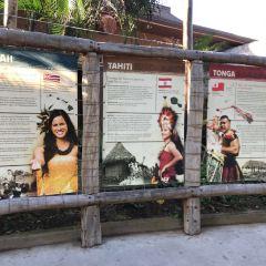폴리네시안 문화센터 여행 사진
