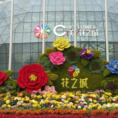 City of Flower User Photo