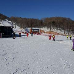 야부리 스키장 여행 사진