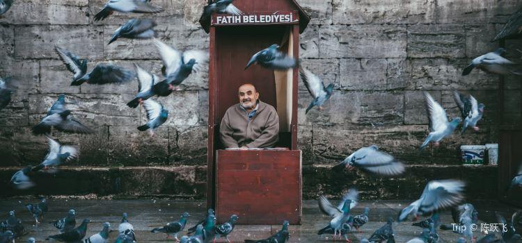 Fatih Camii1