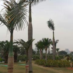 白鷺洲公園用戶圖片