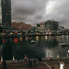 Circular Quay User Photo