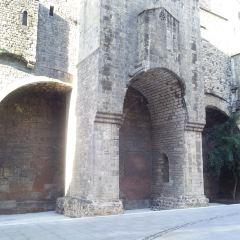 Palau Reial Major User Photo