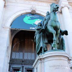 Hayden Planetarium | Tickets, Deals, Reviews, Family
