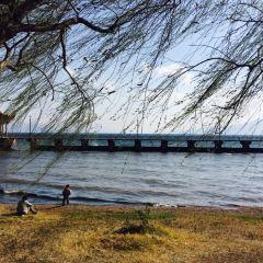Xinhekou Lake Garden User Photo
