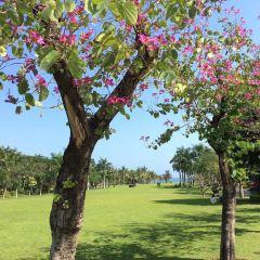 Sanya Begonia Bay Peninsula Golf User Photo