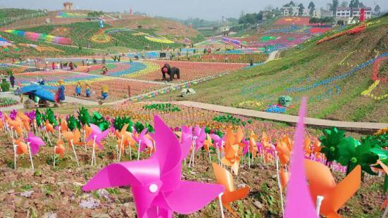 Million Roses Dream Garden