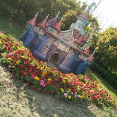 Sik Park User Photo