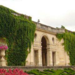 波爾多植物園用戶圖片