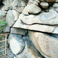 多布庫爾河漂流用戶圖片