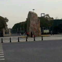 鄭和公園用戶圖片