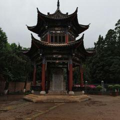 Jiulongchi User Photo