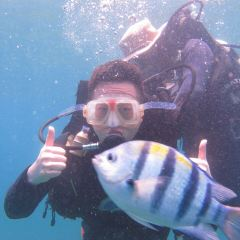 Boundary Islet Diving User Photo