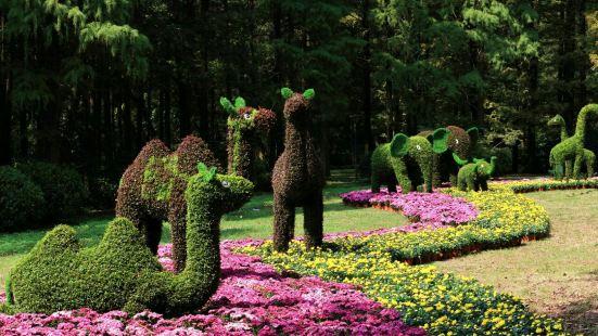 南錫植物園