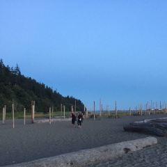 English Bay Beach User Photo