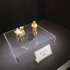 Zhejiang Qiming Museum User Photo