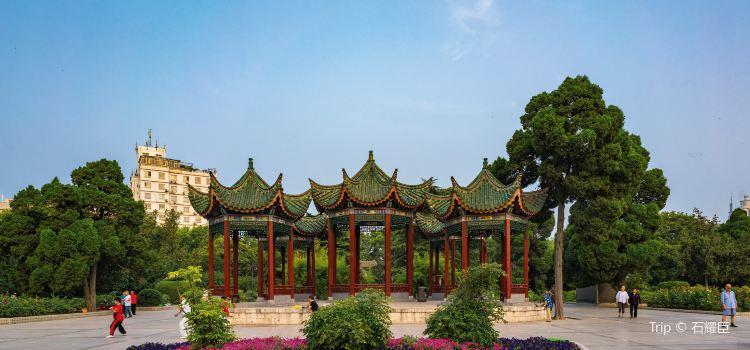 鄭州人民公園1