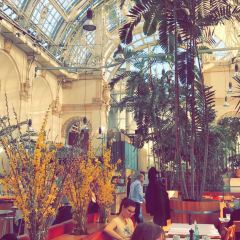 Palmenhaus Cafe Brasserie Bar User Photo