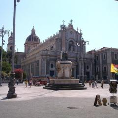 Museo Belliniano用戶圖片