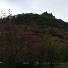 雲崖寺用戶圖片