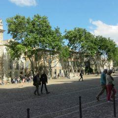 教皇宮廣場用戶圖片