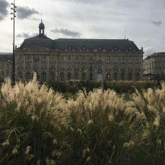 議會廣場用戶圖片