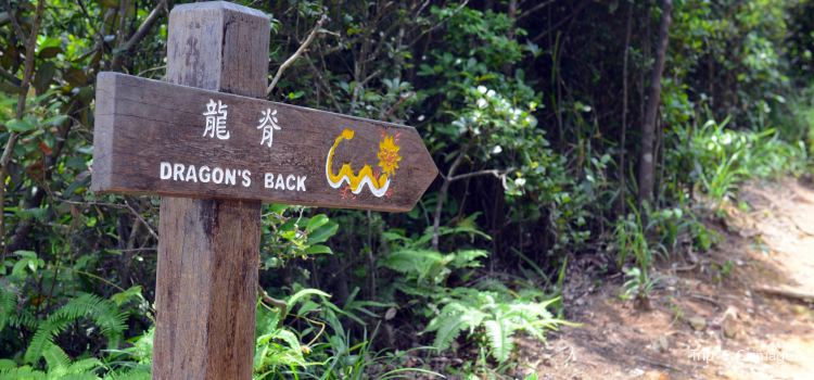 Dragon's Back2