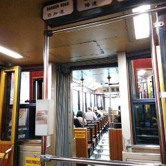 Hong Kong Tramways User Photo
