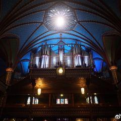 凱旋聖母教堂用戶圖片