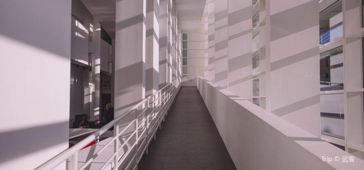Barcelona Museum of Contemporary Art2