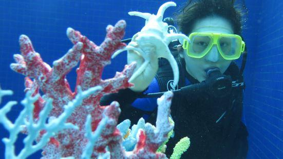 Yalong Bay Mangrove Diving Center