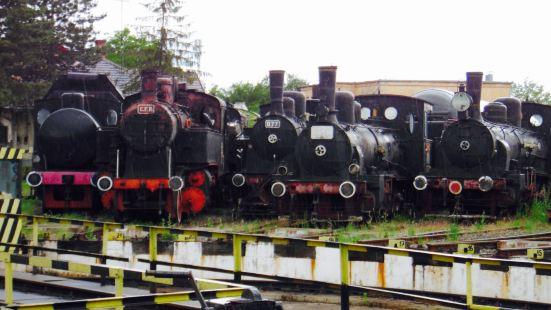 Museum of Steam Locomotives