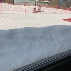 嵩山滑雪滑草場用戶圖片