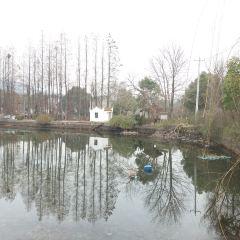 다위완 여행 사진