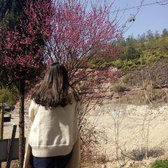 白鶴山莊用戶圖片
