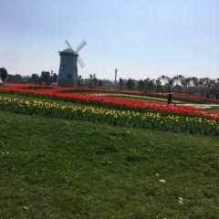 雅林現代農業園(温州)のユーザー投稿写真