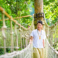 Xishuangbanna Tropical Rainforest National Park Wangtianshu Scenic Area User Photo